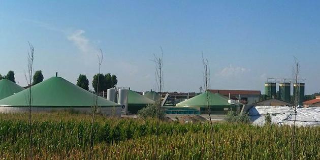 Biogas gilt als klimafreundlich. Gewonnen wird es aus der Vergärung von Pflanzen oder aus Biomüll bzw. Dünger.