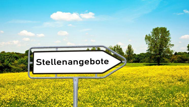 OECD: Gute Arbeitsmarkt-Entwicklung in Deutschland